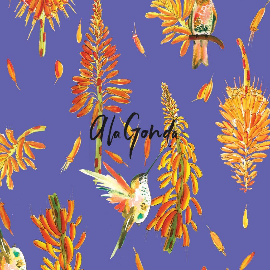alagonda-isla-del-sol-the-hummingbirds-3